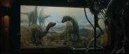 Sauropod Young CLoseup