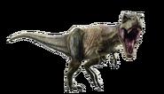 Jurassic world fallen kingdom tyrannosaurus v4 by sonichedgehog2-dcdwz0j