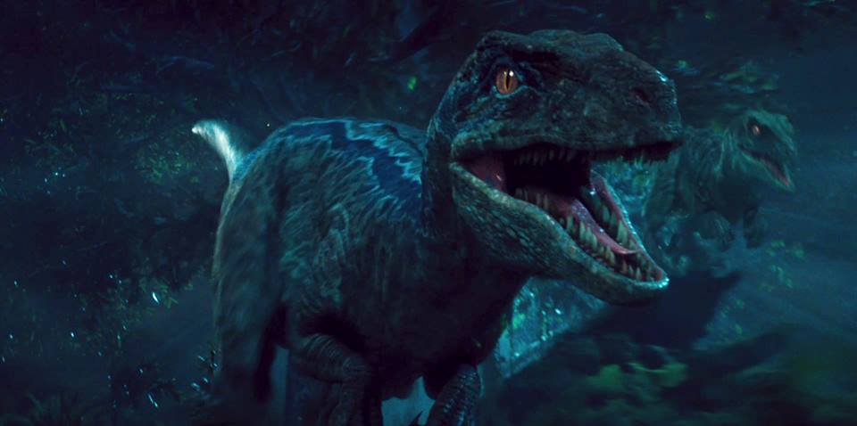 Jurassic World Blue The Raptor By Sonichedgehog2 D8qhboa