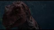 Цератозавруходит