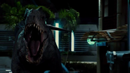 Indominus-roars-before-fight