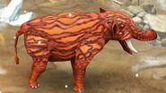 Platybelodon40