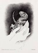 Jurassic park concept art hatchling velociraptor by indominusrex-dbp2xv4