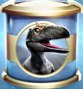 Allosaurus Uncommon Incubator