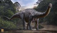Apatosaurus v04 001 Color v03 body-1600x920