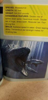 Jwfksurvivalguidemosasaurus