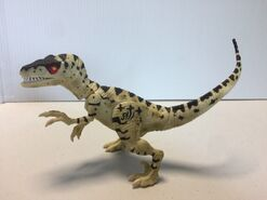 Raptor -4438607599019313539