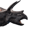Torosaurus Icon Evolution
