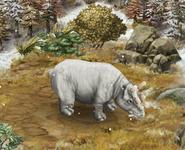 Uintatherium level5