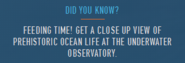 Did you know Underwater Observatory