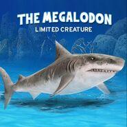 Megalodon123132