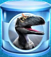 Allosaurus Common Incubator