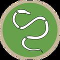 DPG - Worm