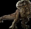 Rex png