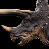Stegoceratops Icon JWE