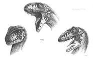 Raptor-teeth-concept-art-for-the-cut-sleeping-rex-scene-of-raptor-teeth