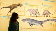 10 - Animals of Jurassic Park