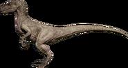 RaptorTundra render