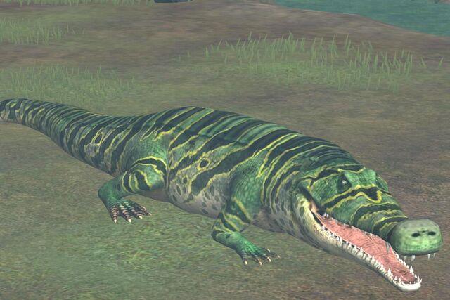 File:Sarcosuchus (39).jpg