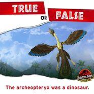 Archaeopteryx true or false JPB