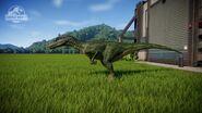 Herrerasaurus Basic