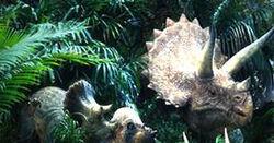 TLWTriceratops
