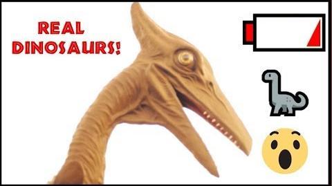 Australopithecusman/Jurassic Park Fan Film with Animatronics!