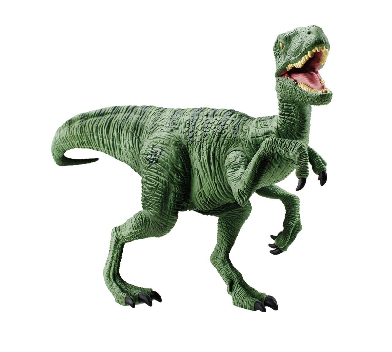 Raptor Size Insaatmcpgroupco