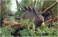 Stegosaurus baby 2