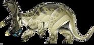 Triceratops jpi