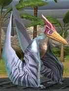 Pteranodon lvl 20