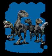 Raptor dlc profile