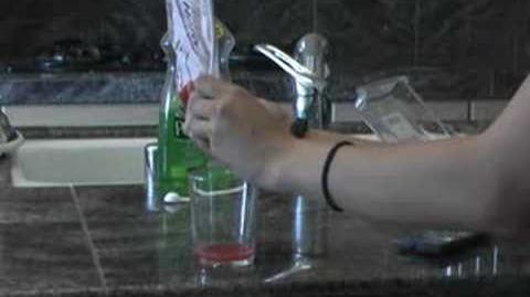 DNA Extraction Home Experiment