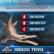 Dolirhynchops name trivia