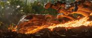 JWFK - Fossil destruction