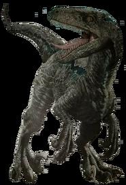 Raptor render by kingrexy-dci8cb0