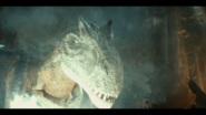Allosaurus-Attack-Battle-at-big-Rock-8