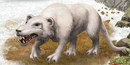 Megistotherium