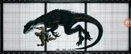 Indoraptor 2
