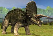 Triceratops lvl 20