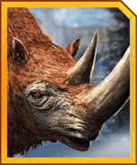 Woolly Rhino-icon