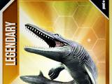 Hainosaurus/JW: TG