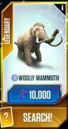 Mammothcard