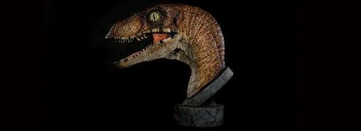 Raptor 4