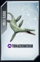 Trinacromerium
