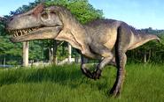 JWEAllosaurus