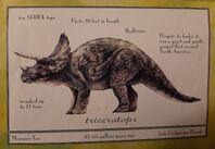 TriceratopsLostWorldGuide
