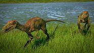 Troodon 4 1080