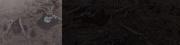 Спинозаврмираюрскогопериода