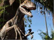 Raptor ush-jurassic2
